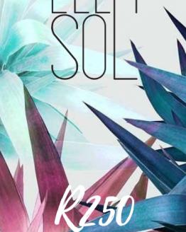 Ella Sol Gift Coupon 250